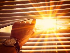 Plötzlich Schimmel bei großer Hitze? Falsches Lüften im Sommer.